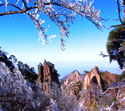 Huangshan pictures